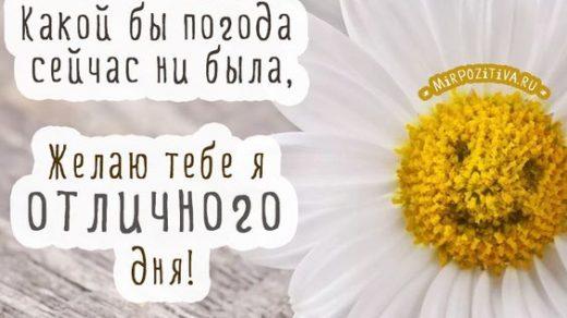 Открытки с пожеланием хорошего дня и отличного настроения (9)