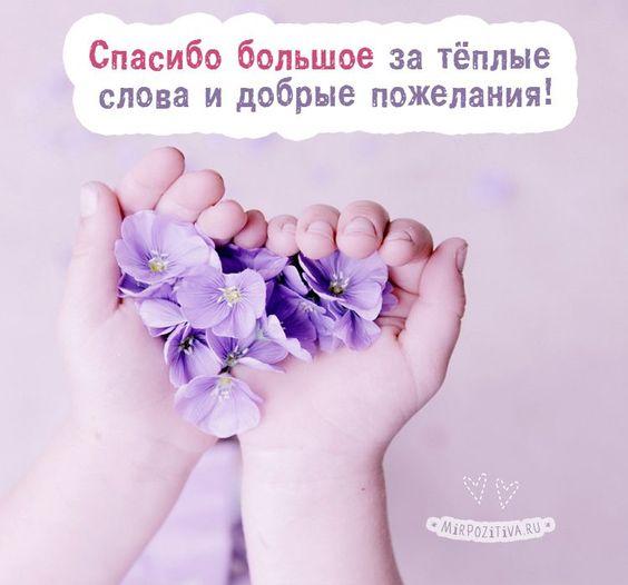Фото Спасибо, что ты есть у меня! - подборка картинок (3)