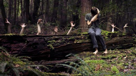 В поход в лес картинки и изображения019