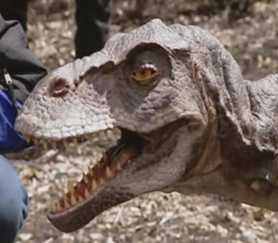 Динозавры в наше время фото004