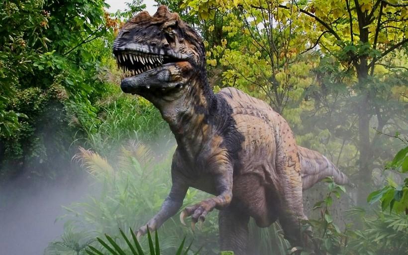 Динозавры в наше время фото005
