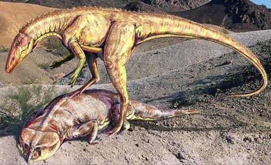 Динозавры в наше время фото006