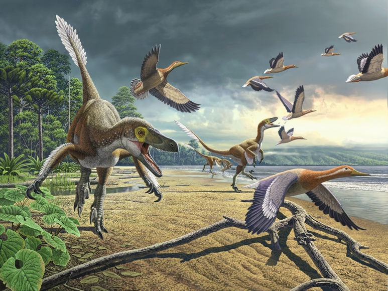 Динозавры в наше время фото019