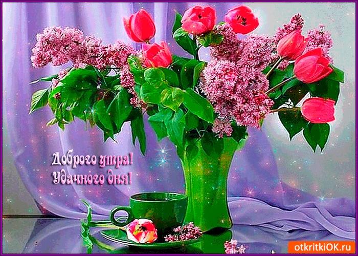 Доброго утра и чудесного дня007
