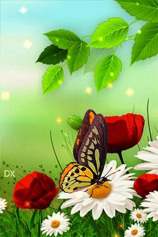 Картинки лето красивые на телефон014