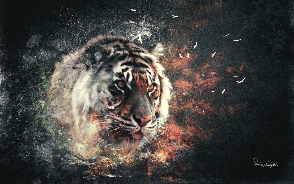 Картинки на рабочий стол тигр (3)