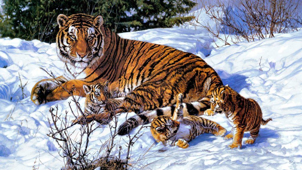 Картинки на рабочий стол тигр (7)