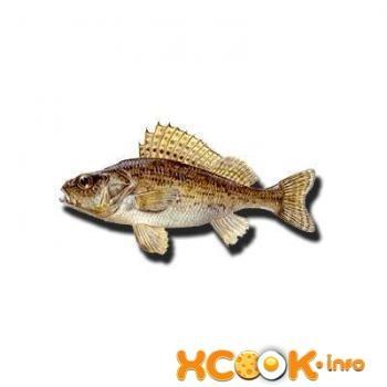 Картинки рыбки для детей на белом фоне (10)