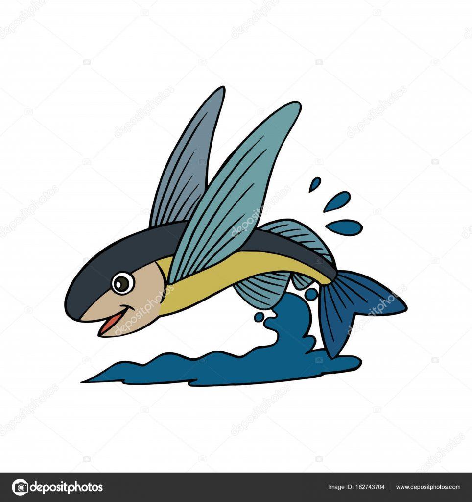 Картинки рыбки для детей на белом фоне (14)