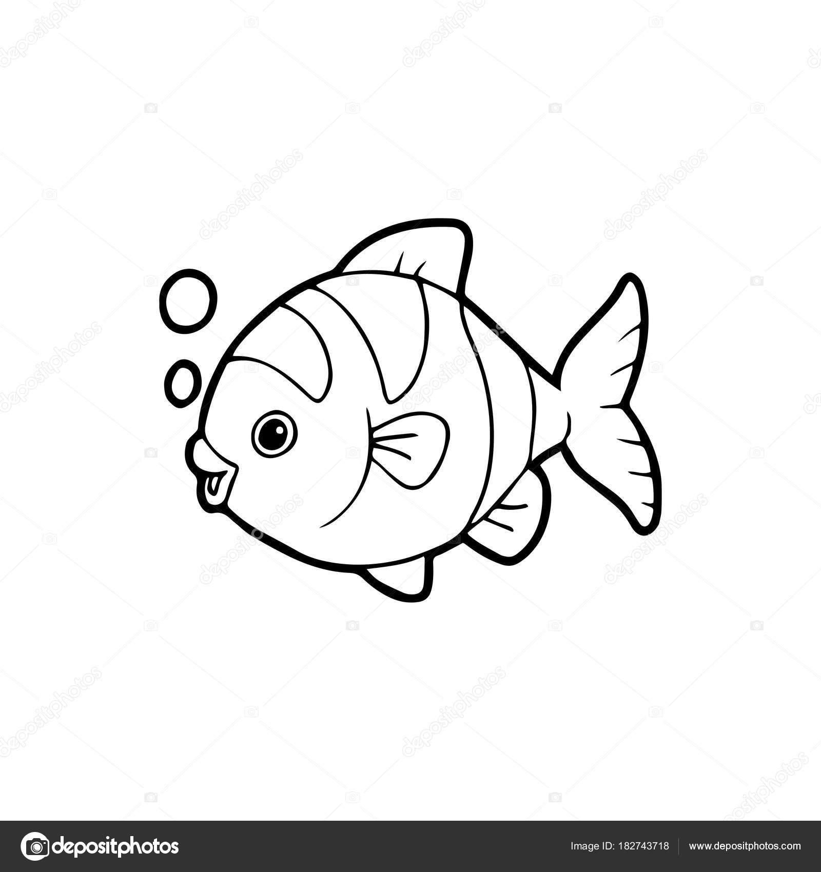 Картинки рыбки для детей на белом фоне (6)