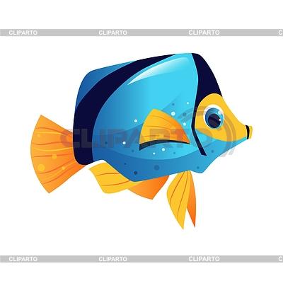 Картинки рыбки для детей на белом фоне (8)
