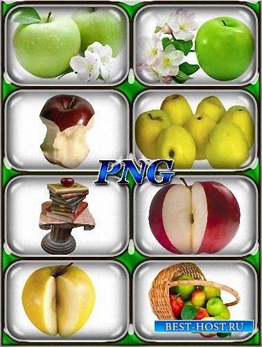 Красивые картинки яблоко на прозрачном фоне012