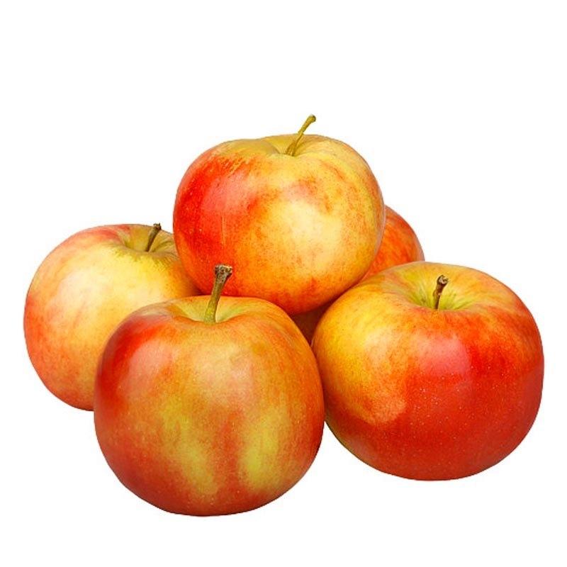 Красивые картинки яблоко на прозрачном фоне018