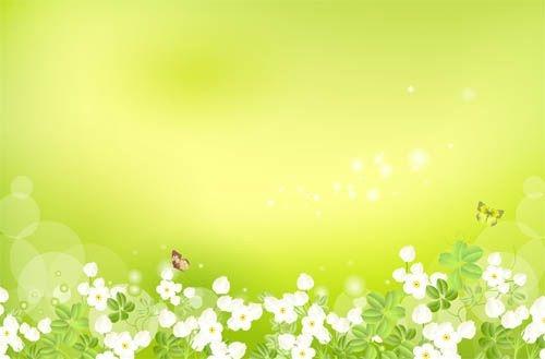 Красивый фон цветы для фотошопа002