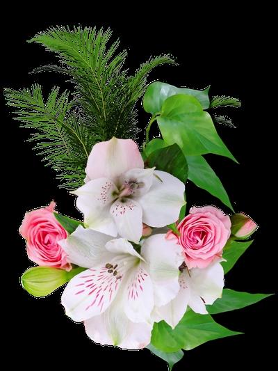 Красивый фон цветы для фотошопа010