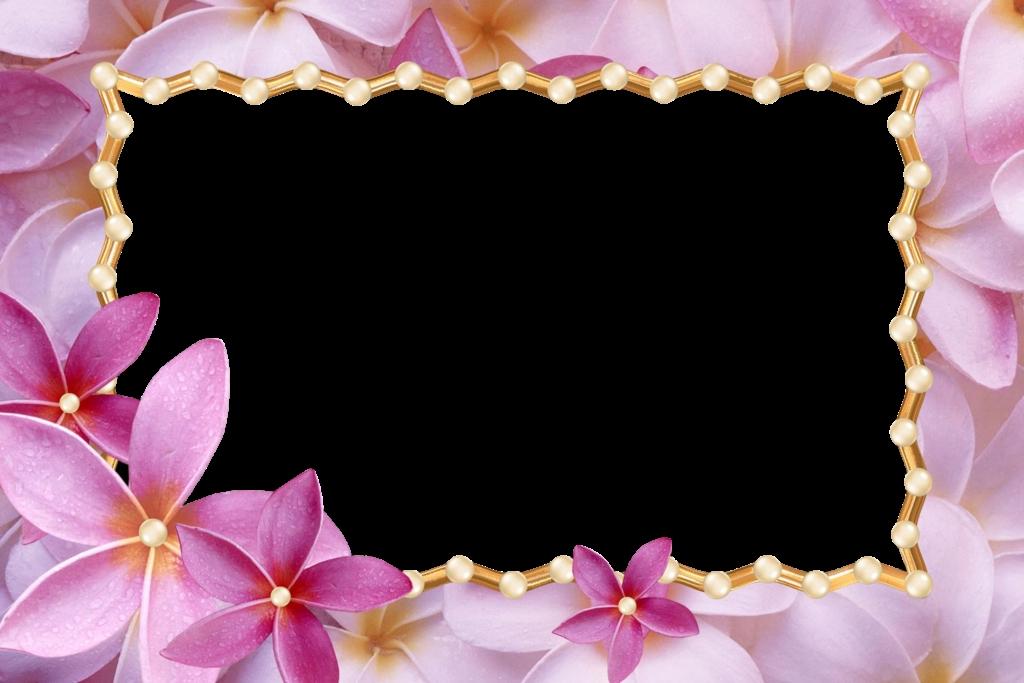 Красивый фон цветы для фотошопа014