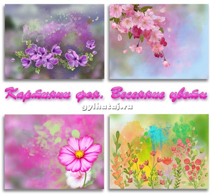Красивый фон цветы для фотошопа019