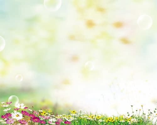 Красивый фон цветы для фотошопа020