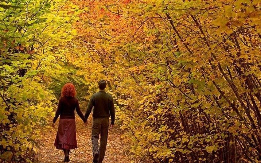 Пара в парке осенью 001