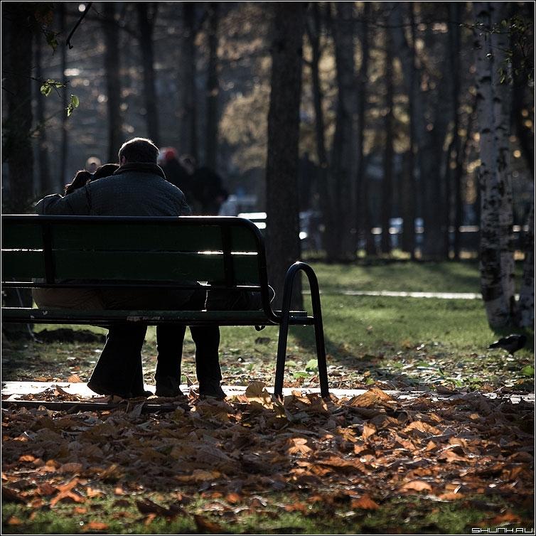 Пара в парке осенью 014