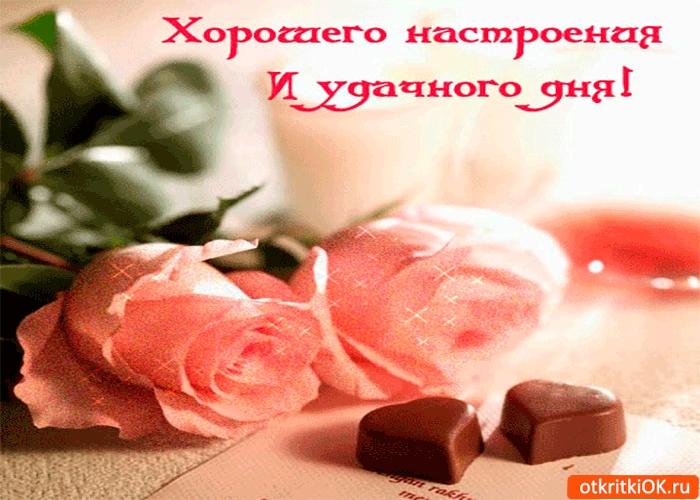 Приятного дня и хорошего вечера011