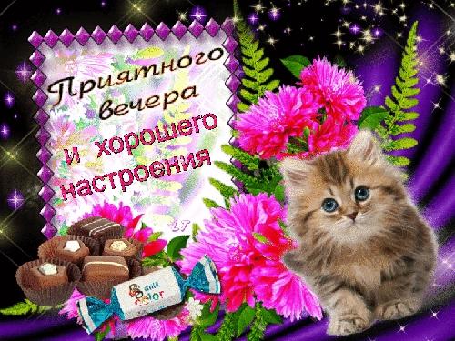 Приятного дня и хорошего вечера012