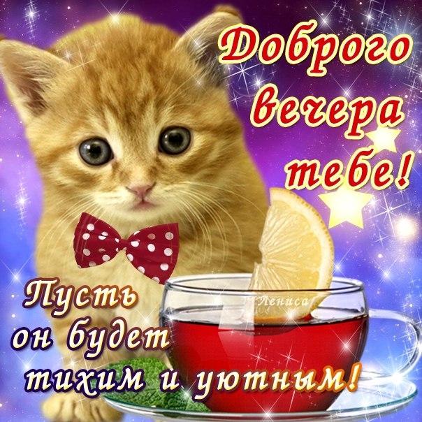 Приятного дня и хорошего вечера013