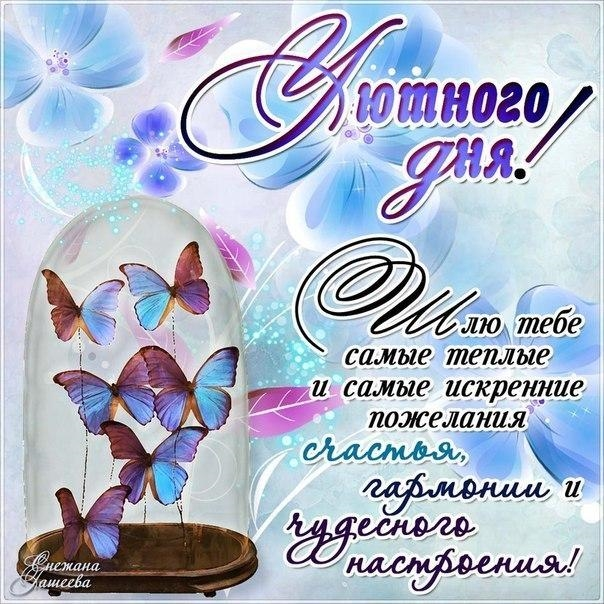 Приятного дня и хорошего вечера014