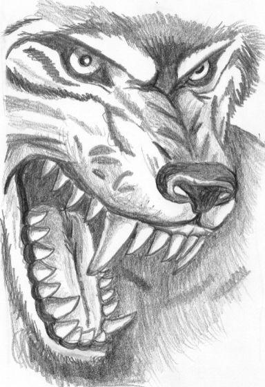 Рисунки для срисовки волки аниме010