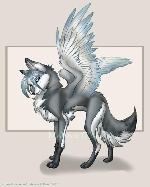 Рисунки для срисовки волки аниме016