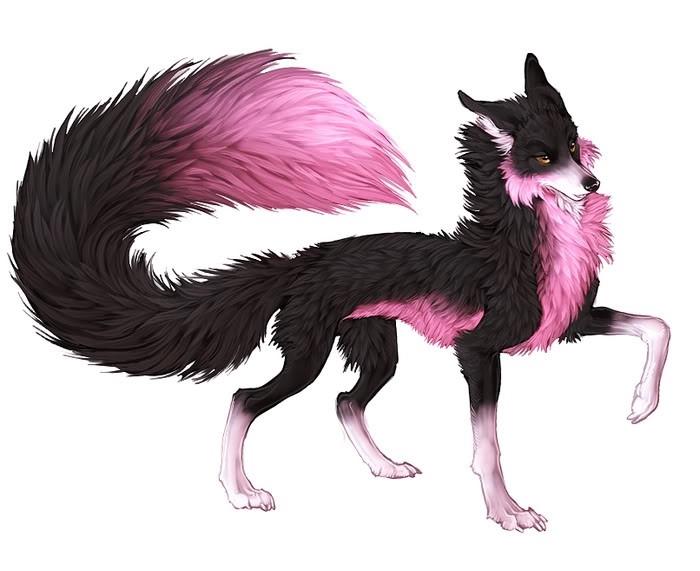 Рисунки для срисовки волки аниме017