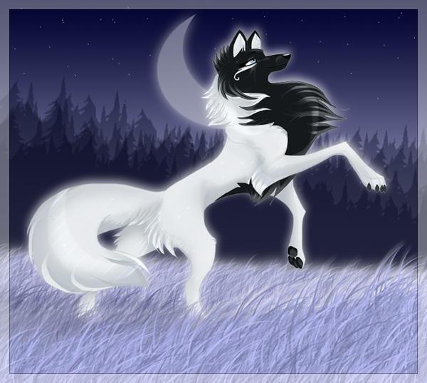 Рисунки для срисовки волки аниме019