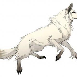 Рисунки для срисовки волки аниме022