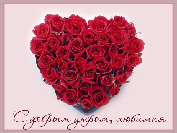Утром цветы для любимой 009