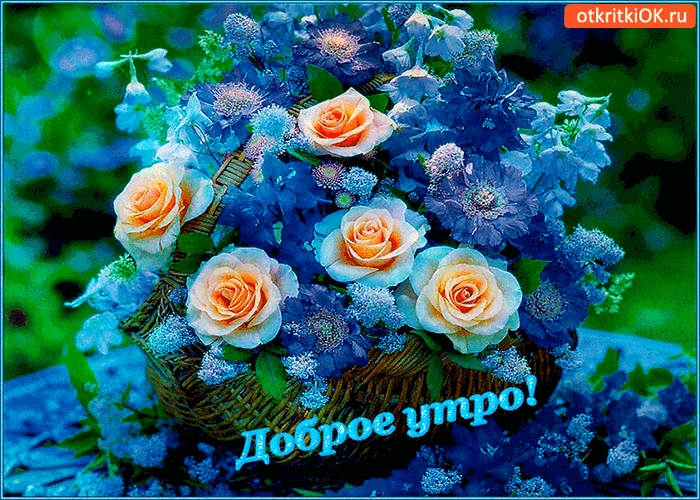 Утром цветы для любимой 014