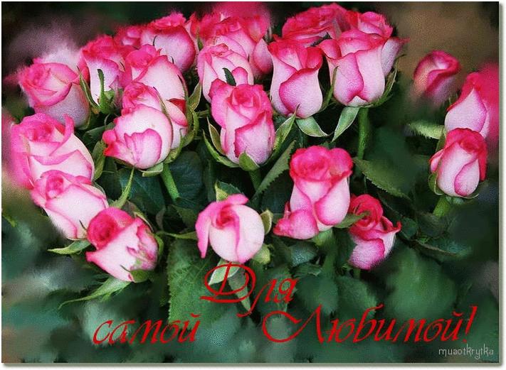 Утром цветы для любимой 018