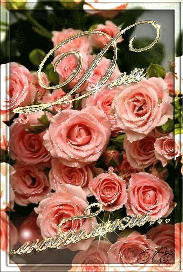 Утром цветы для любимой 020