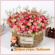 Утром цветы для любимой 024