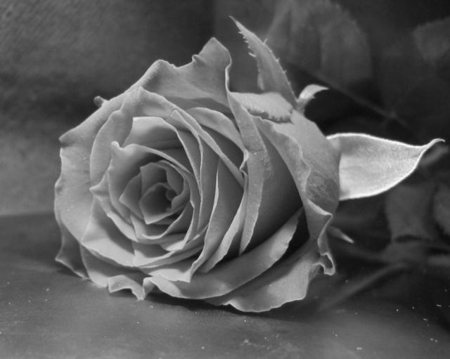 Черно-белое фото расставани 006