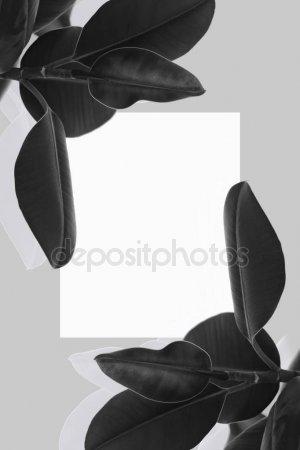 Черно-белое фото расставани 012