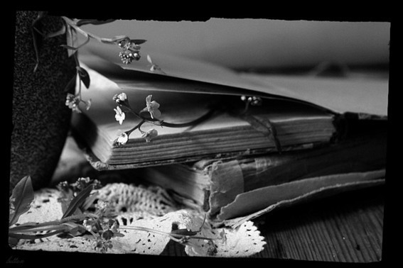 Черно-белое фото расставани 014