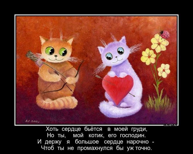 картинки ты мой самый любимый котик многих тележку удобнее