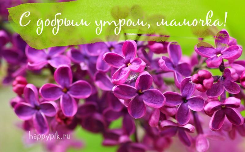 Доброе утро мама - красивые и милые открытки, картинки (10)