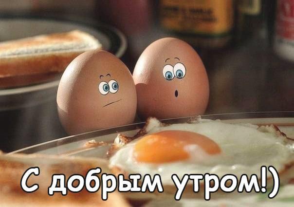 Веселые картинки для поднятия настроения с добрым утром (11)