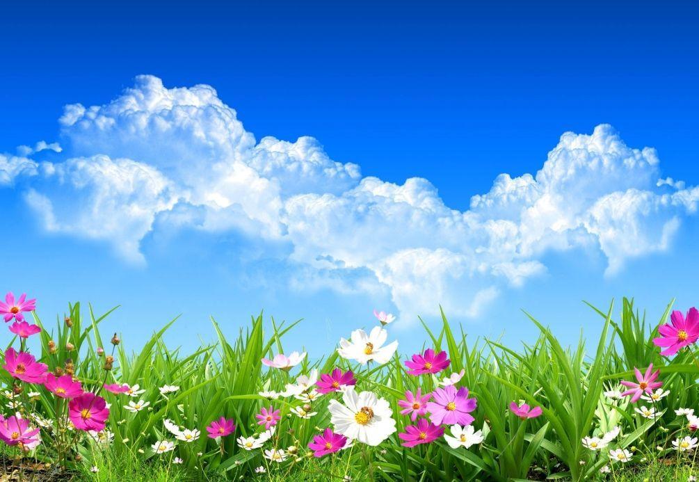 Весенние красивые картинки - большая коллекция (1)