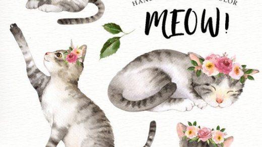 Графические рисунки кошек и собак   подборка (1)
