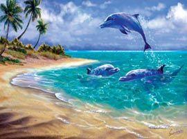 Дельфины красивые картинки и фото (12)