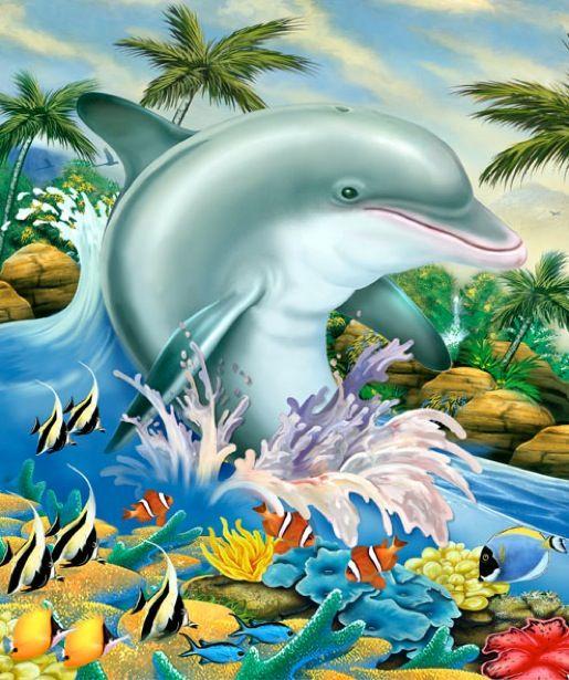 Дельфины красивые картинки и фото (13)