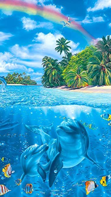 Дельфины красивые картинки и фото (15)