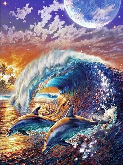 Дельфины красивые картинки и фото (17)